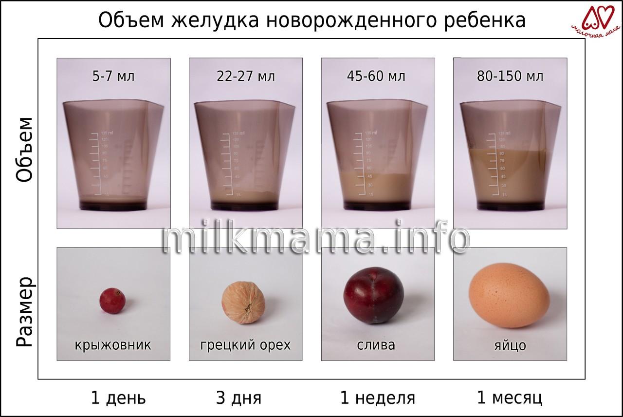 Сколько молока нужно новорожденному